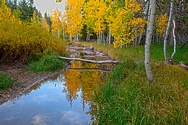 Duck Creek Fall Reflection 5068